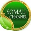 """Somali Channel oo barnaamijka """"DALDHIS"""" kusoo qaatay horumarka garoomada diyaaradaha ee Gedo iyo Caaudwaaq (Daawo Video)"""