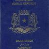 Somalia's passport is more powerful than those of Ethiopia, Djibouti
